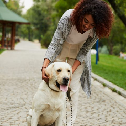 Cheerful woman pets her Labrador on a city park sidewalk